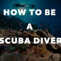 how to be a scuba diver