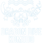 Diving center & Liveaboard & hotel in Komodo Flores