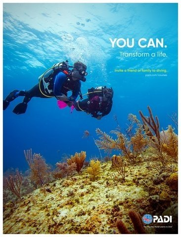 Become a PADI Instructor in Komodo