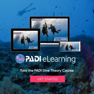 dragon dive elearning padi