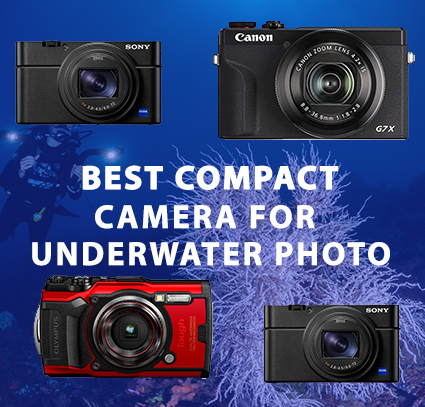 best compact camera 2021